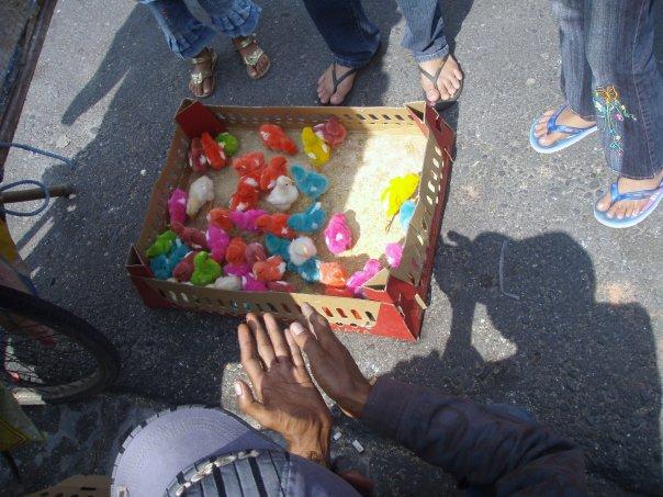 2009-bird-market-yogyakarta-indonesia-1936838_1172529960290_8064252_n